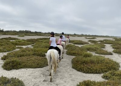 Horse riding in the Camargue, one hour from the Granges du Bosquet