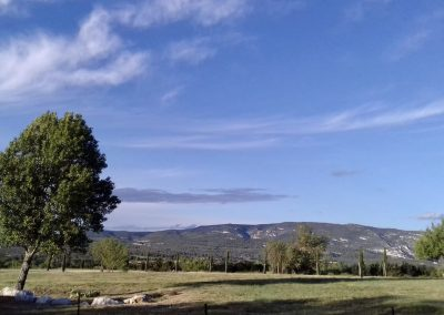 Vue sur les Monts de Vaucluse